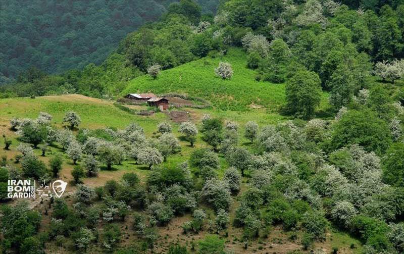 روستا سنگچال