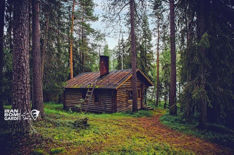 کلبه جنگلی 3