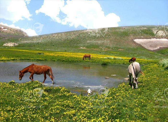 منطقه ییلاقی لپاسر در نزدیکی اقامتگاه جنت روستای ج