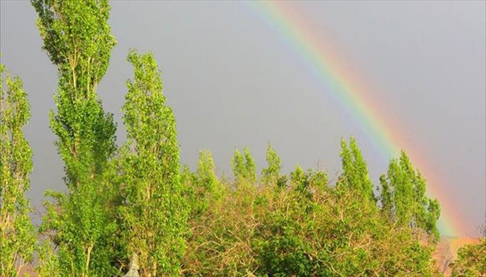 بهشت در کویر