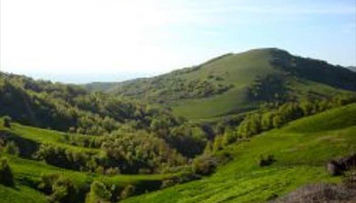 کوه سنگر
