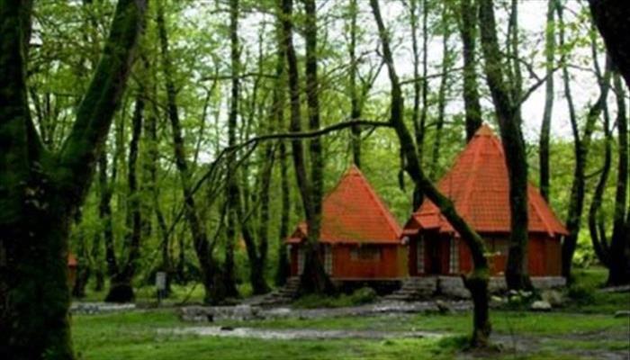 پارک جنگلي چالدره