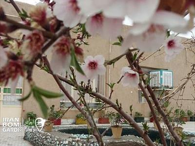 اقامتگاه بوم گردی فیروزه شهربابک
